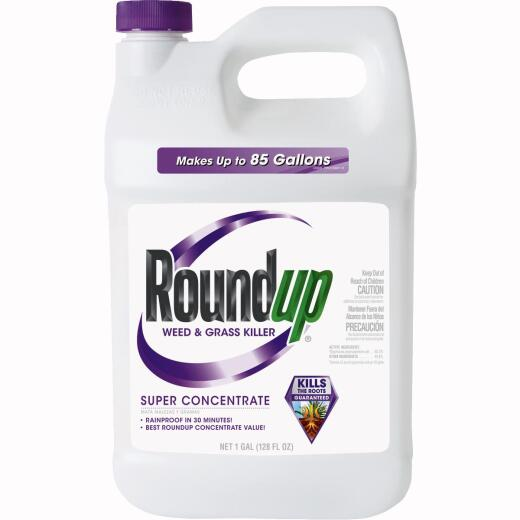 Roundup 1 Gal. Super Concentrate Weed & Grass Killer